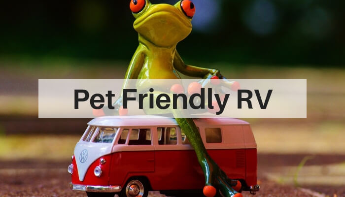 Best RV for Traveling with Pets